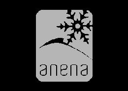 anenalogo