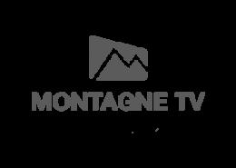 montagenTVgris